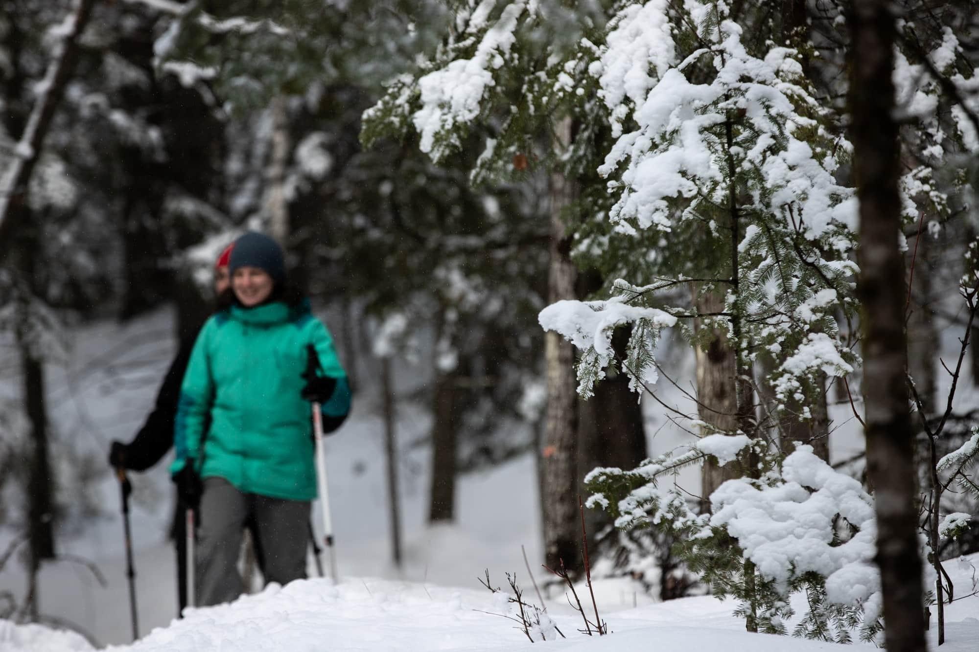 Parc national du Mont-Tremblant - Raquette - activités   D