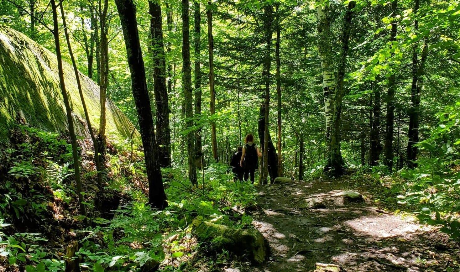 Randonnée pédestre Domaine St-Bernard