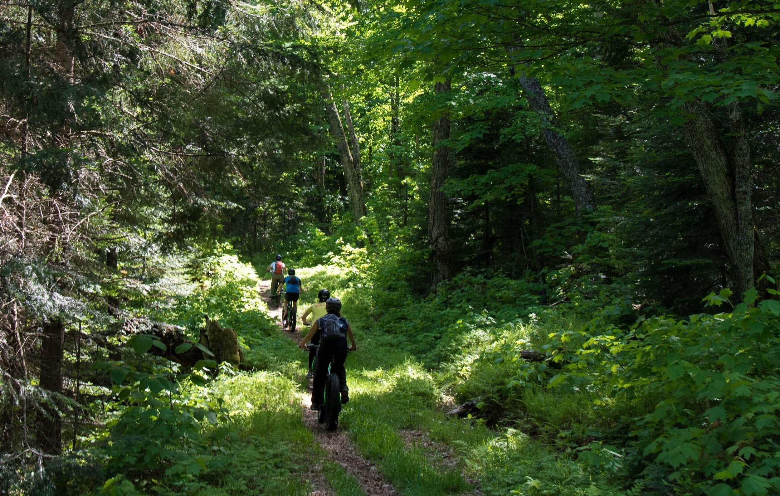 e-bike parc national Mont-Tremblant